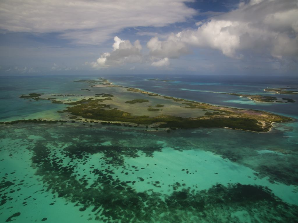Nature in Los Roques
